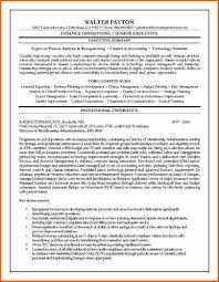 Executive Summary Resume Sample by How To Write A Executive Summary Resume Writing Resume Gallery