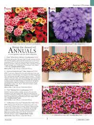 e flowers view e catalog park seed co