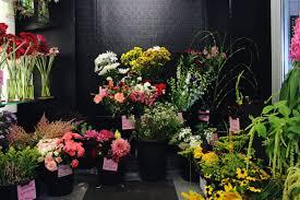 Floral Designer Resume Blooming Ludema U0027s Floral U2014 Esther Clark Illustration U0026 Calligraphy