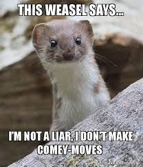 Weasel Meme - this weasel says i m not a liar i don t make comey moves make