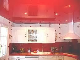 faux plafond cuisine faux plafond cuisine lovely indogate cuisine jardin galerie