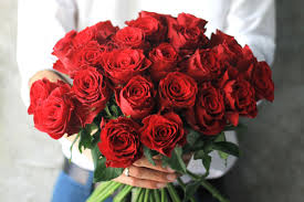 valentines day roses why are roses so popular for s day reader s digest
