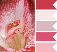 Pink Color Scheme 451 Best Color Crush Inspiration Images On Pinterest Colors