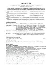 information technology professional resume professional resume template free best new job images on ideas