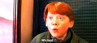 Harry Potter Trolley Meme - we need to talk about the trolley witch in harry potter and the