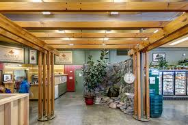Timber Trellis Interior Timber Trellis And Posts U2013 Bellingham Bay Builders