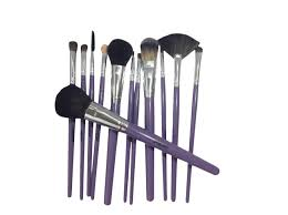 12pc professional makeup brush set purple
