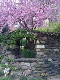 Secret Garden Wall by Saint John The Divine A Secret Garden In Morningside Heights
