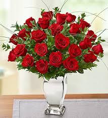 Long Stem Rose Vase Long Stem Red Roses In Vase Distinctive Designs With Marlo