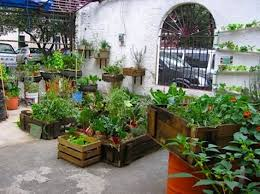 elegant urban garden ideas on interior home remodeling ideas with