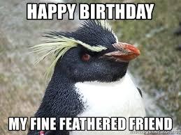 Penguin Birthday Meme - happy birthday my fine feathered friend so what penguin meme