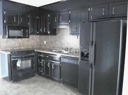 one bedroom apartments in statesboro ga superb one bedroom apartments in statesboro ga photo room lounge