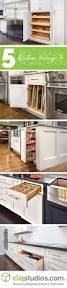 Kitchen Cabinets Organization Ideas by Best 25 Pantry And Cabinet Organizers Ideas On Pinterest