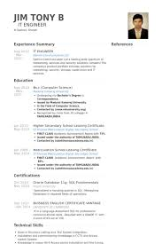 it resume exles it engineer resume sles visualcv resume sles database