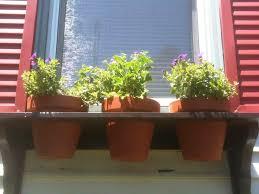 best window flower boxes ideas home decor inspirations