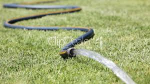 garden hose royalty free video and stock footage