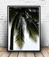palm tree palm tree print palm print palm tree photo black and