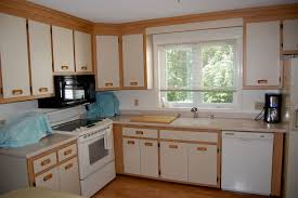 Kitchen Cabinet Remodeling by Kitchen Cabinet Refacing Phoenix Home Design Ideas