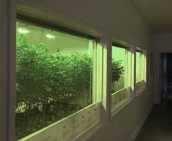 seattle best deals on ipads black friday the stranger u0027s guide to every recreational weed store in seattle