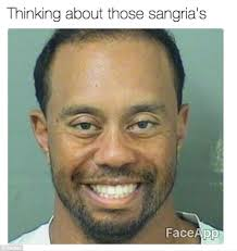 Meme Face App - tiger woods mugshot gets the meme treatment daily mail online