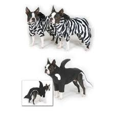Orca Halloween Costume Zebras Killer Whales Costumes Boston Terriers Dogs
