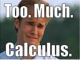 Calculus Meme - 8 hilarious calculus parodies worth checking out let s win college