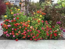 garden layout ideas fall flower garden ideas house design and office cheap flower