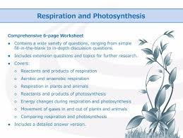 respiration and photosynthesis worksheet by