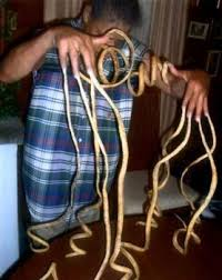 longest finger nails scared me to death