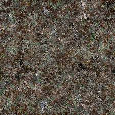 image gallery of forest ground texture seamless