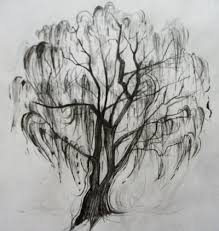 best 25 willow tree tattoos ideas on weeping willow