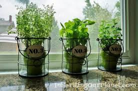kitchen herb garden ideas kitchen herb garden diy inspired