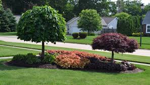 front yard landscaping ideas zone 5 23 landscaping ideas with