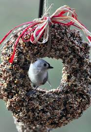 the garden roof coop diy birdseed wreaths