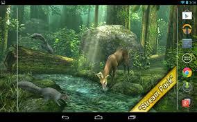 forest hd v1 6 unlocked live wallpaper apk free download apk dl