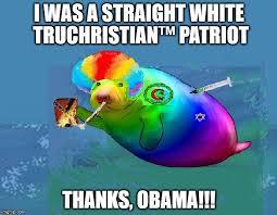 Manatee Meme - druggee gay manatee latest memes imgflip