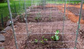 hudson valley backyard farm company re designs my vegetable garden