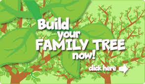 family tree family tree