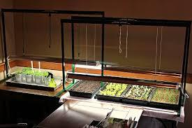 grow light indoor garden mavis garden blog grow light set up and pictures of seedlings