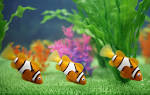 Wallpapers Backgrounds - Lifelike toy fish called Robo swim inside aquarium booth (category picture day robo fish Lifelike toy called swim inside aquarium booth japantoday 1600x1012)