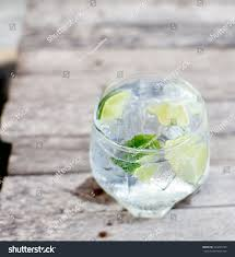vodka tonic lemon gin tonic glass ice lime slice stock photo 204243736 shutterstock