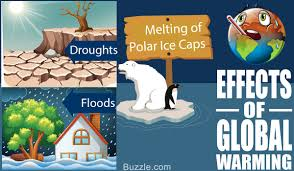 global warming causes and effects dire consequences of global warming and its eerie effects on life