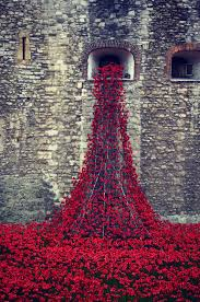 the tower of london poppy installation daydreams of summertime