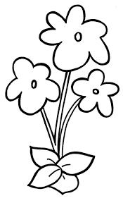 blank flowers to color www mindsandvines com