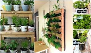 lights to grow herbs indoors herb planter indoor indoor herb garden plus can you grow herbs