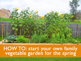 5 tips on how to start a family vegetable garden this spring