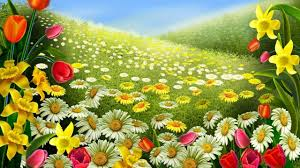 Beautiful Flower Pictures Beautiful Flower Wallpaper Youtube