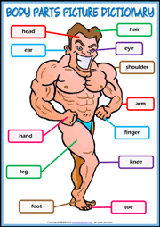 body parts esl printable worksheets and exercises