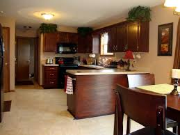 Kitchen Cabinets Staining by Cozy Gel Stain Kitchen Cabinets Gallery Ideas Home Designs
