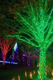 thanksgiving asheville nc 69 best christmas u0026 holidays in asheville images on pinterest